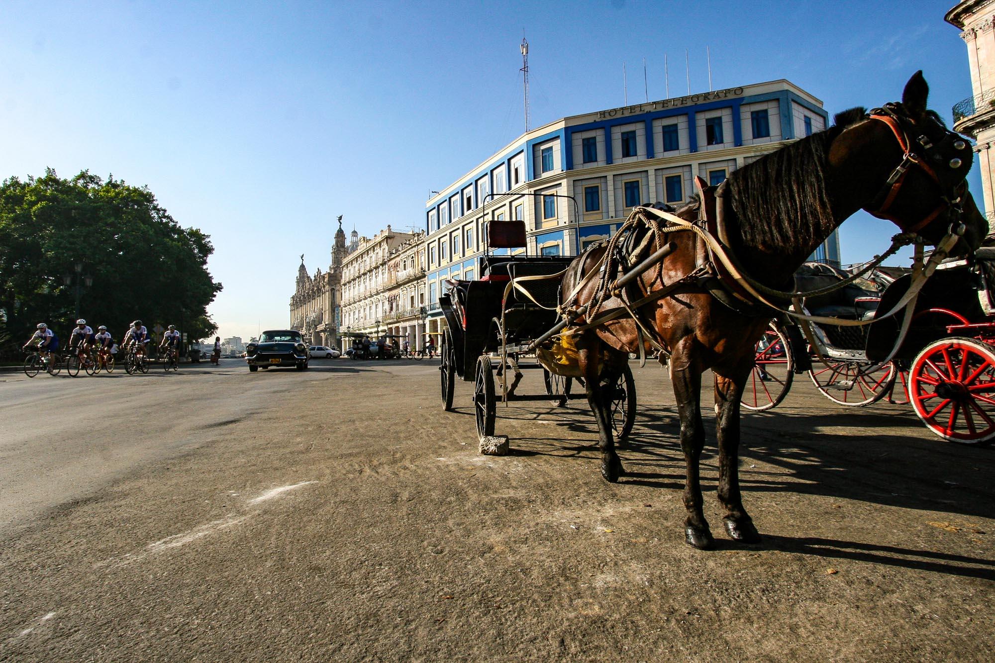 Im Vordergrund eine Pferdekutsche in Havanna. Von hinten kommen Rennradfahrer und Autos.