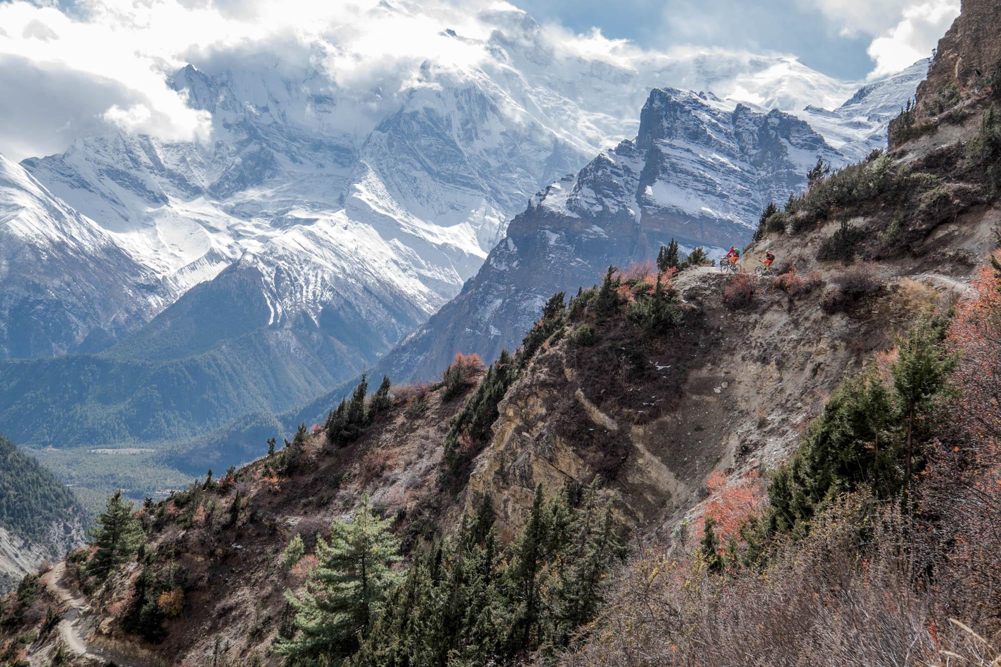 Zwei Mountainbiker fahren vor dem Panorama des Himalaya auf einem schmalen Pfad.