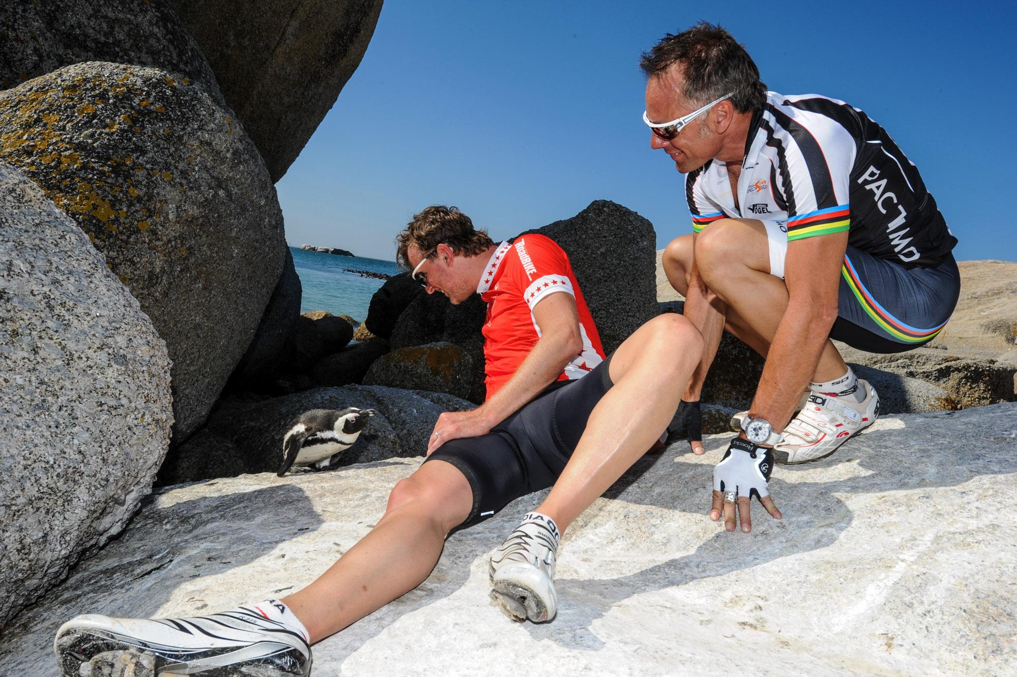 Jens Vögele und Mike Kluge entdecken am Strand einen Pinguin
